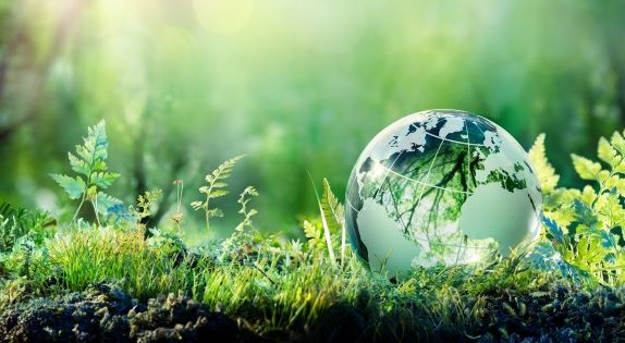 nature with globe