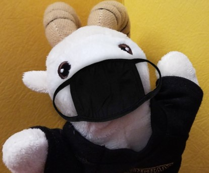 Library mascot Whitty the plush ram wearing his facemask!