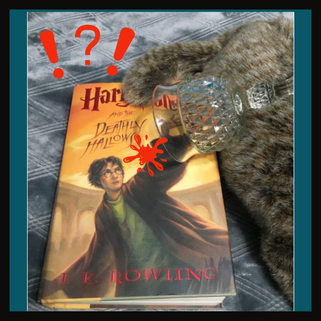 Harry Potter Damaged