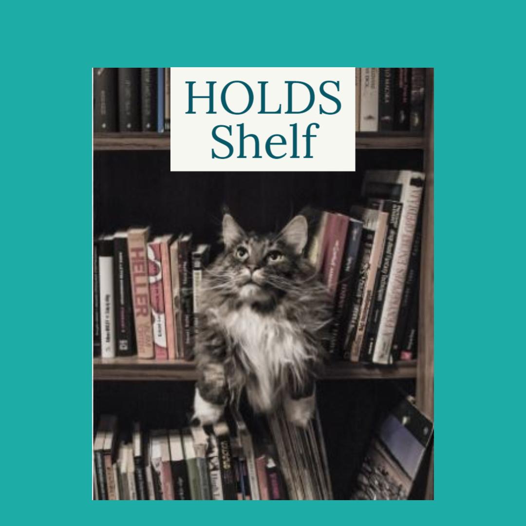 Holds Shelf Cat