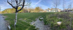 Lawn at Jordan Pond