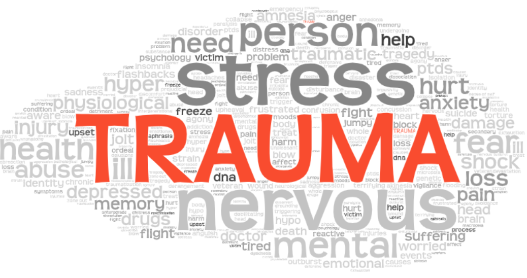 Image of trauma related vocabulary in a word cloud shape
