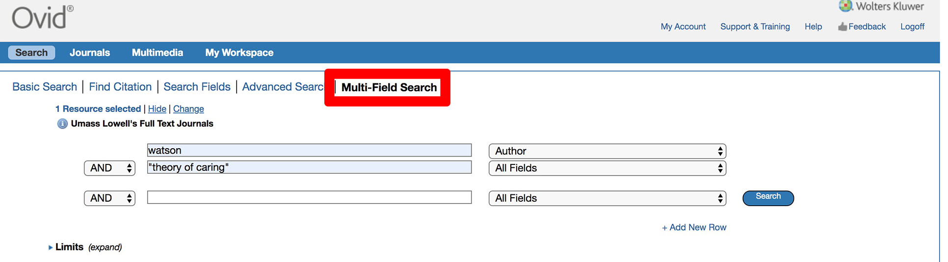 Example of the multi-field search for a nursing theory.