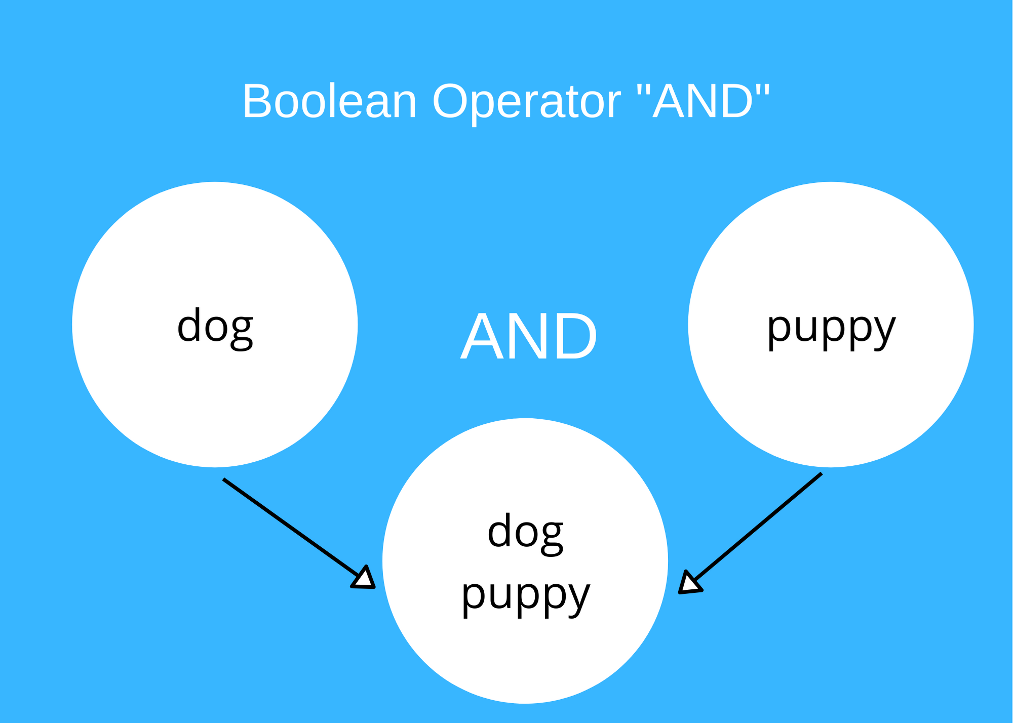 graphic shows example with Boolean operator AND. If you look for dog AND puppy, both terms will appear in each one of the responses