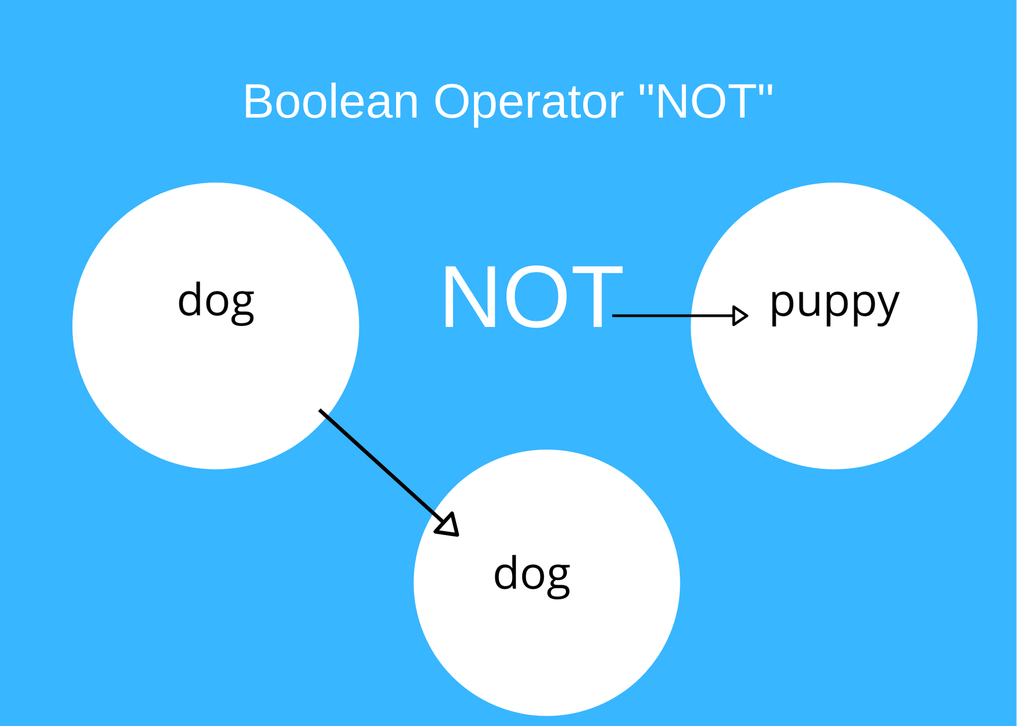 Graphic shows that if your are looking for information on dogs but nor puppies, you could use the operator NOT to exclude the term puppy