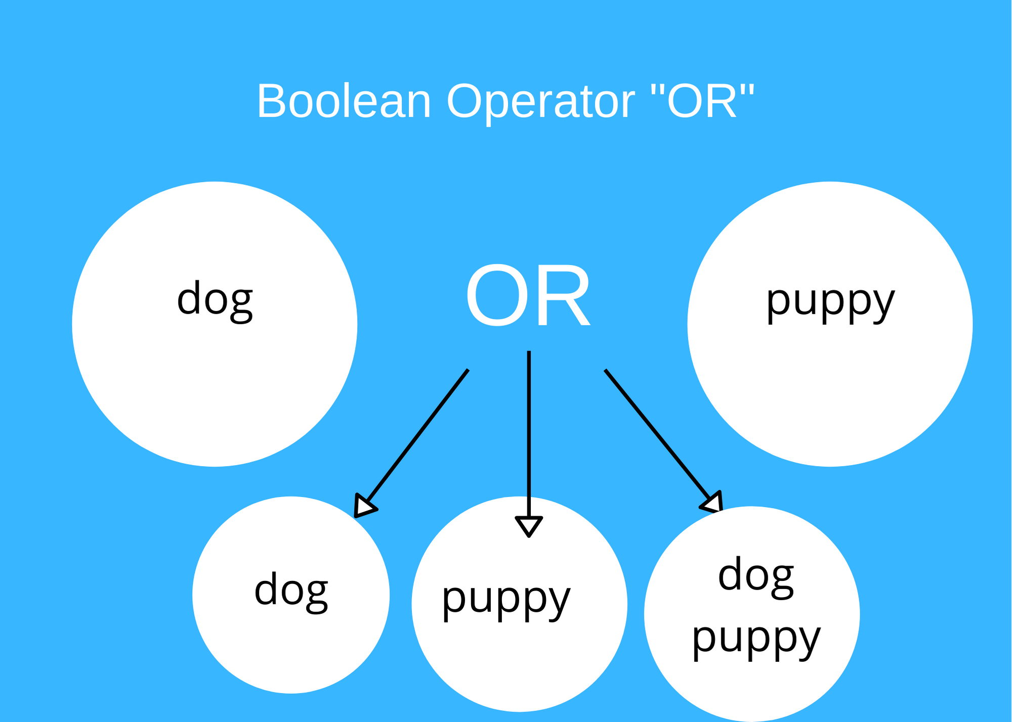 Graphic shows that if you search for dog OR puppy your results will have items with both or either term.