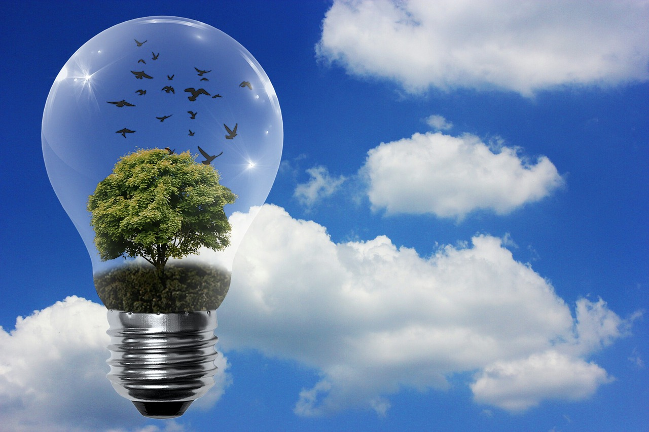 light bulb with tree and birds inside. Example of reusable energy