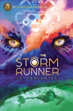 cover of the storm runner