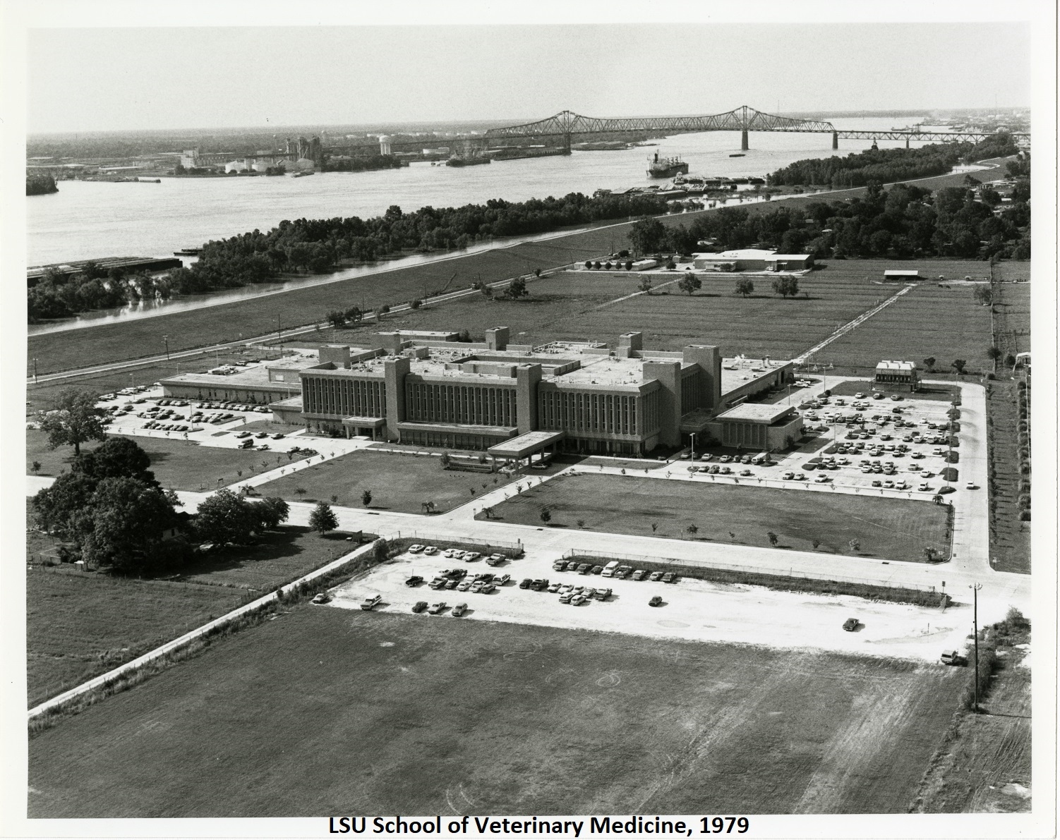 LSU School of Veterinary Medicine, 1979