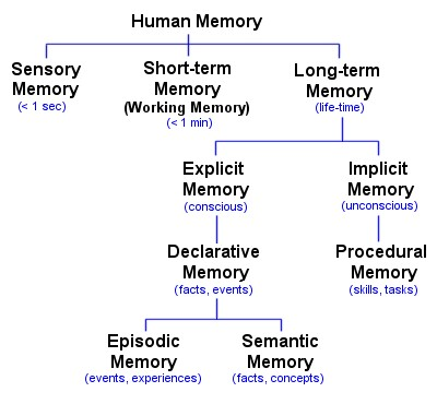 lists types of human memory according t image source article