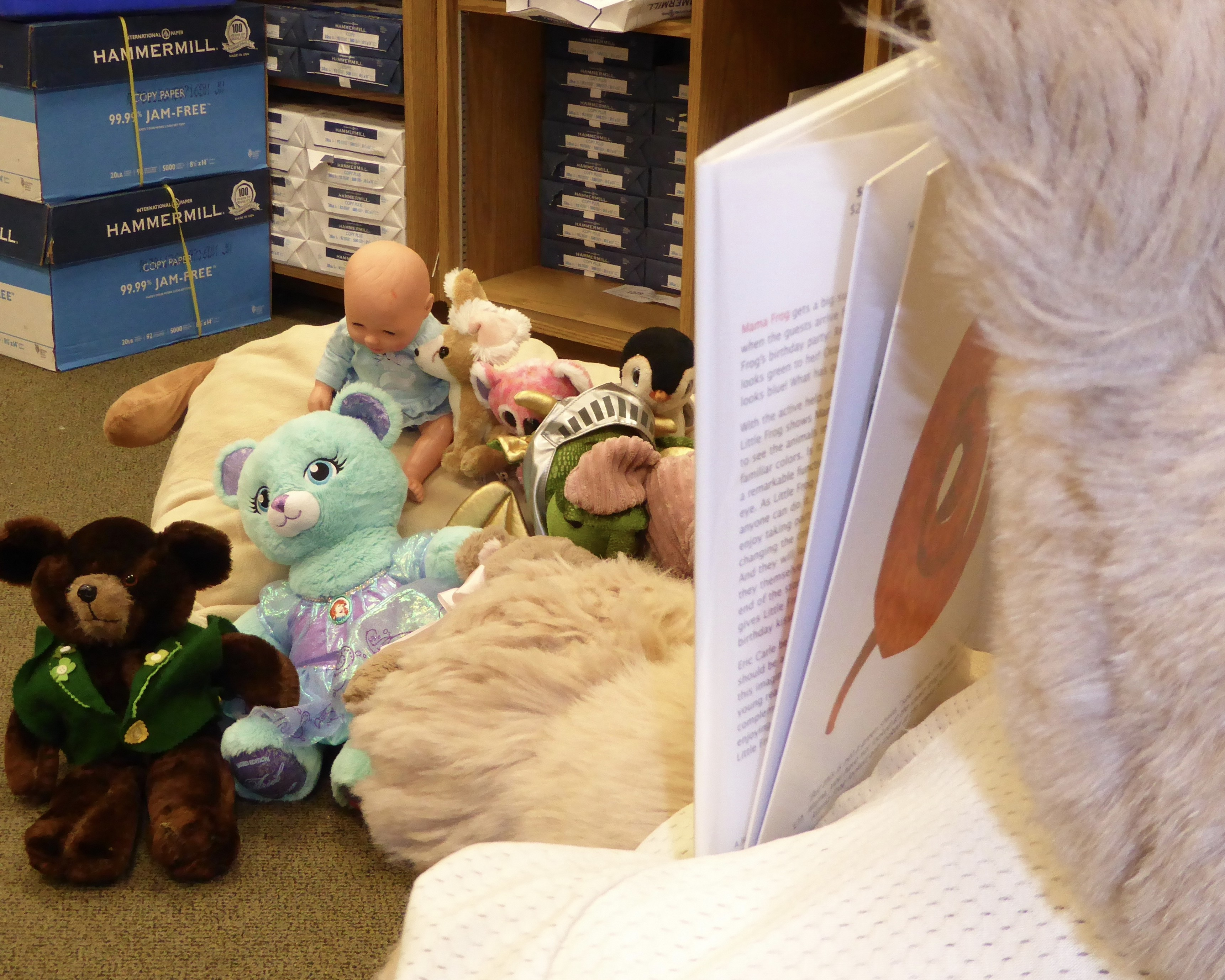 Stuffed Animal Sleep Over Storytime, all ages
