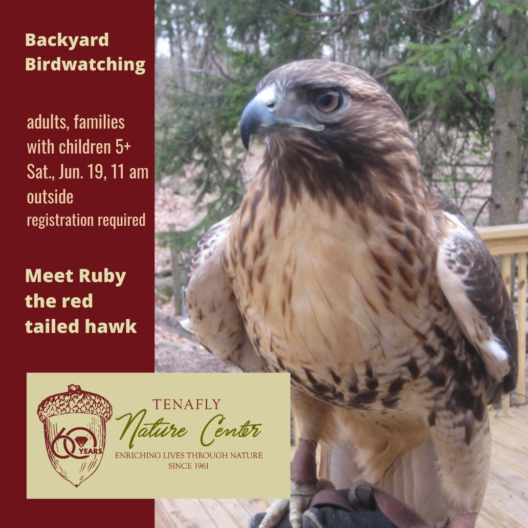 Backyard Birdwatching with the Tenafly Nature Center, adults & families