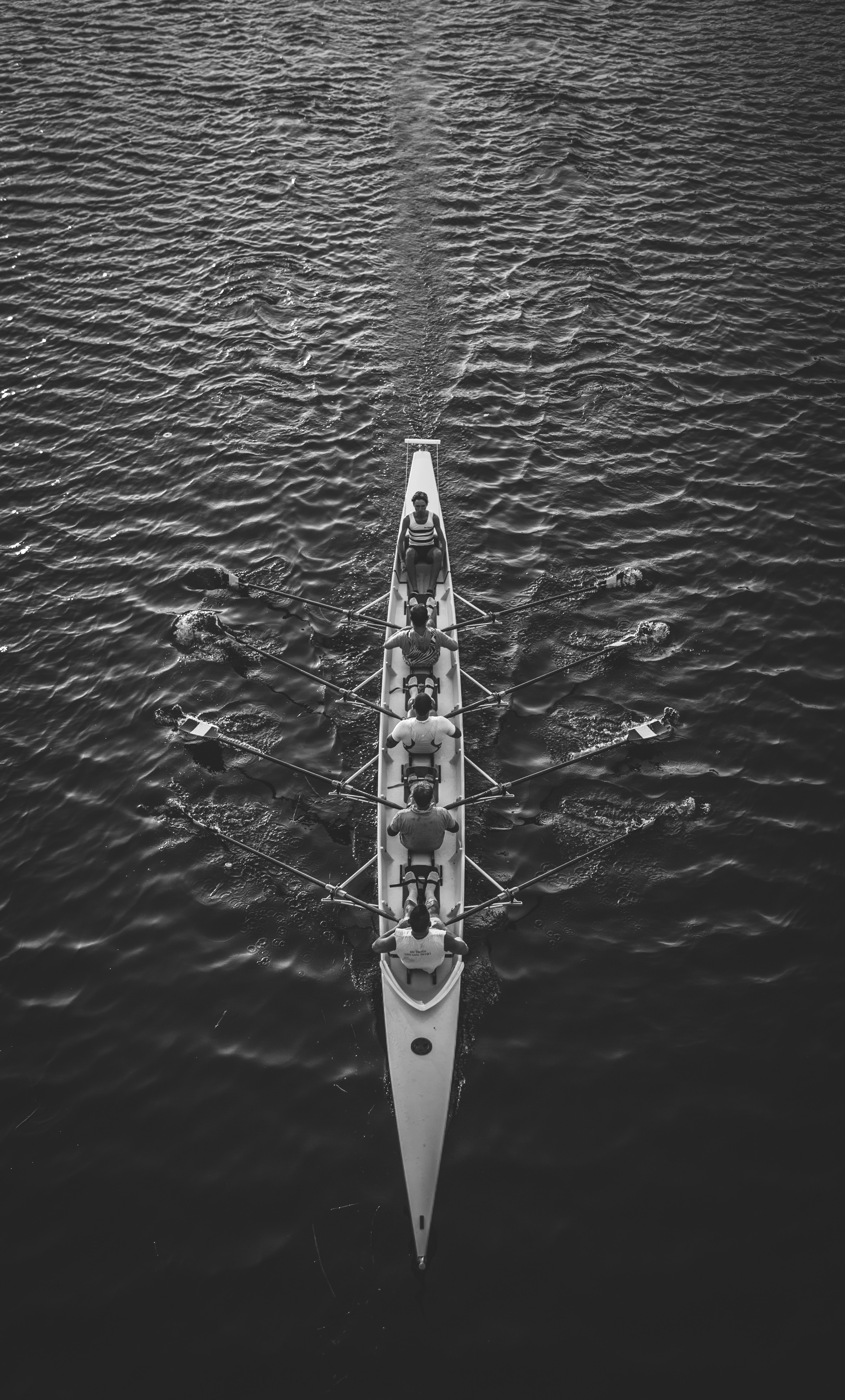 aerial view of rowers rowing in large body of water