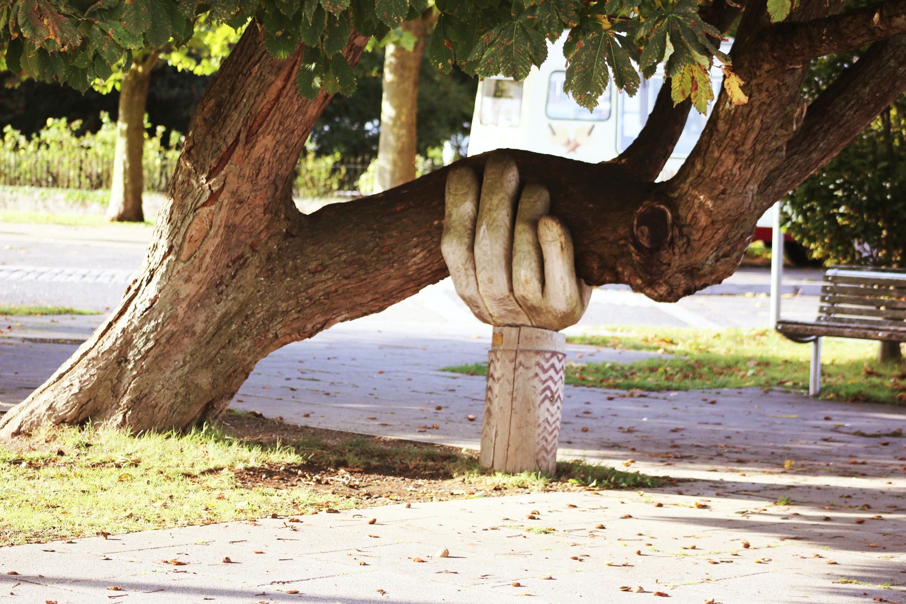 giant tree branch being held up by a wooden carved hand sculpture
