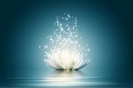 Virtual - Hatha Yoga