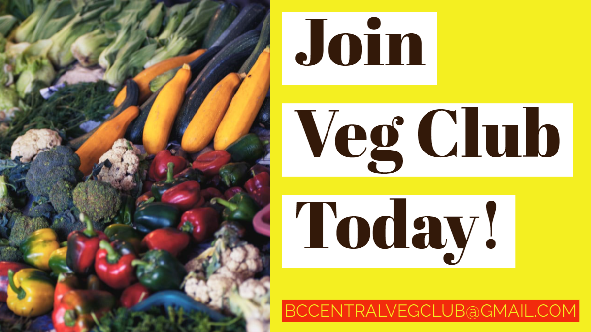Join Veg Club today! Email us at bccentralvegclub@gmail.com