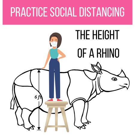 Person standing on stool in front of rhino