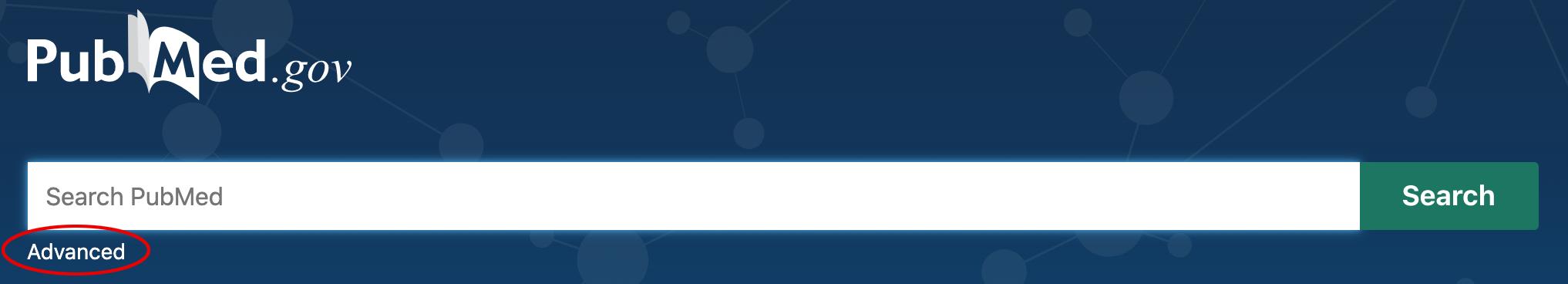 Advanced link under search bar
