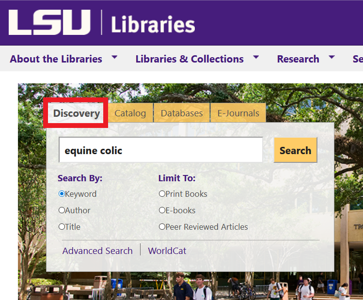 location of discovery search box