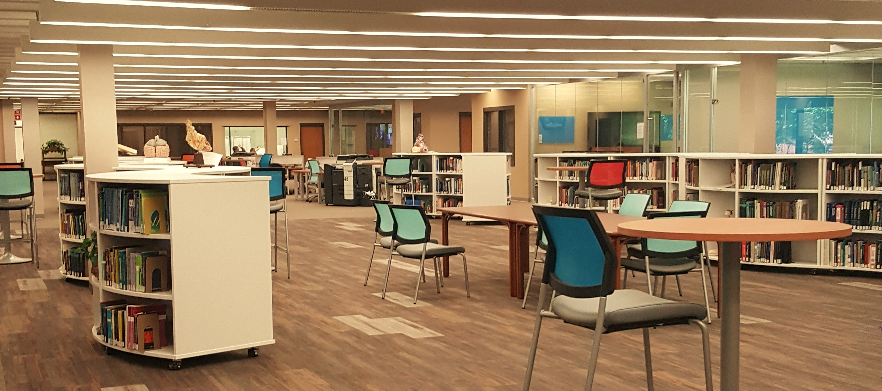 Photograph of library interior, showing anatomical models, meeting rooms, and computer kiosks