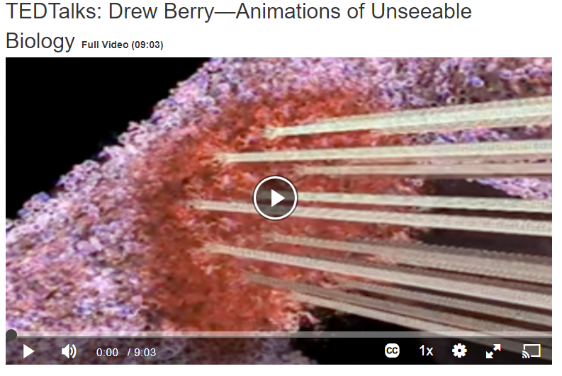 TED Talks: Drew Berry - Animations of Unseeable Biology Screenshot