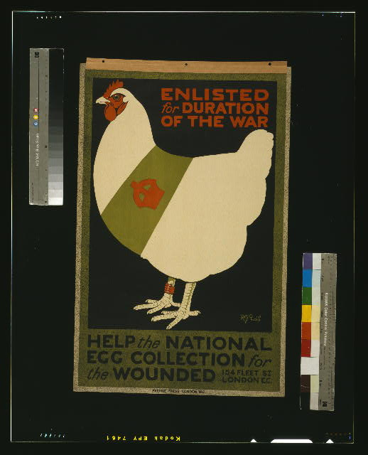 Poster with Chicken