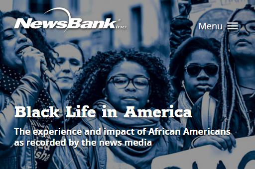 Black Life in America database image