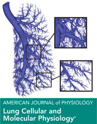 Journal Cover - Title in white lettering in a teal horizontal banner underneath a diagram of a lung against a white background.