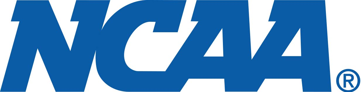 Logo - Text in bold blue lettering.