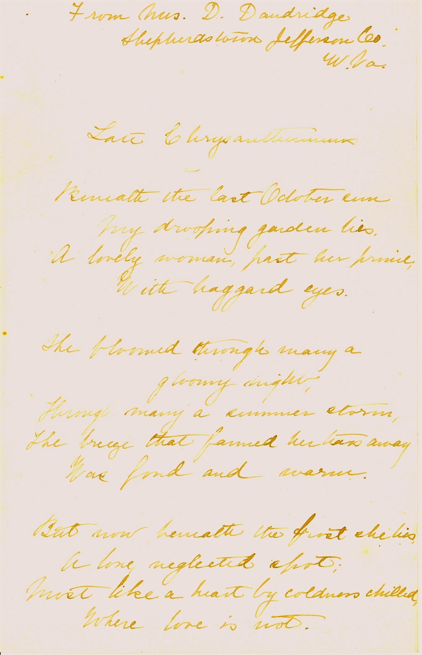 Danske Dandridge poem, Late Chrysanthemum