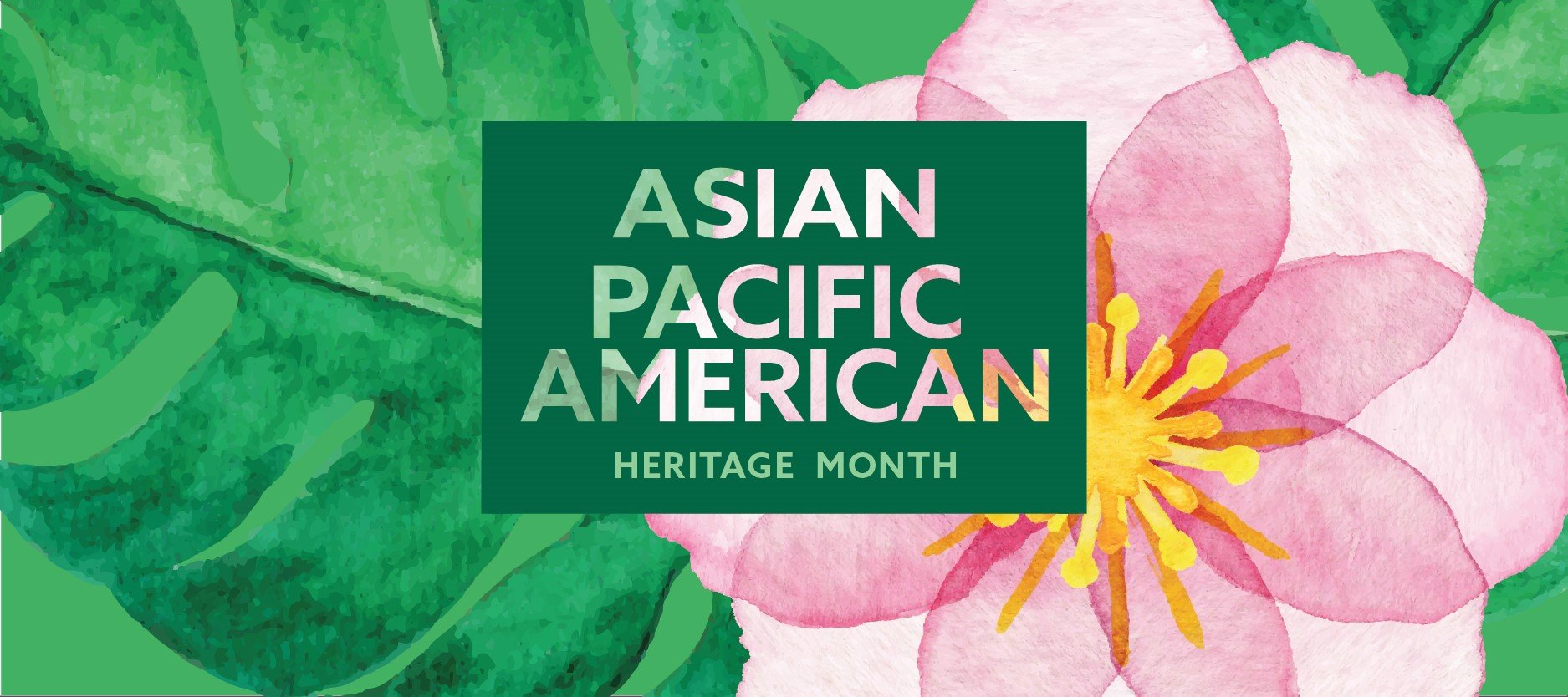 The words 'Asian Pacific American Heritage Month' in a green box over the image of a pink flower.