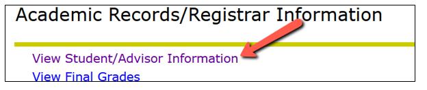View student/advisor information