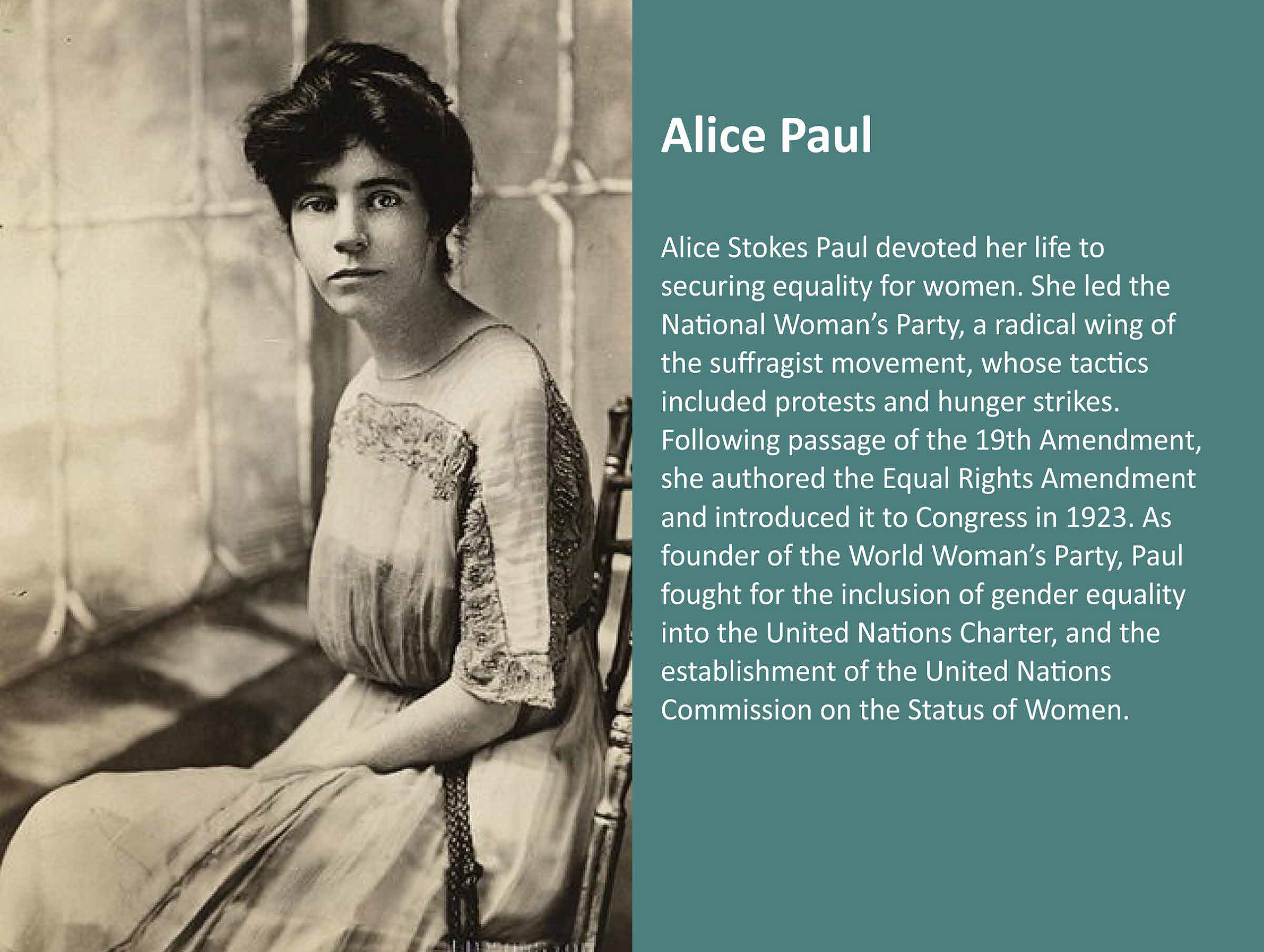 Alice Stokes Paul devoted her life to securing equality for women. She led the National Women's Party, a radical wing of the suffragist movement, whose tactics included protests and hunger strikes. Following passage of the 19th Amendment, she authored the Equal Rights Amendment and introduced it to Congress in 1923. As founder of the World Women's Party, Paul fought for the inclusion of gender equality into the United Nations Charter, and the establishment of the United Nations Commission on the Status of Women.