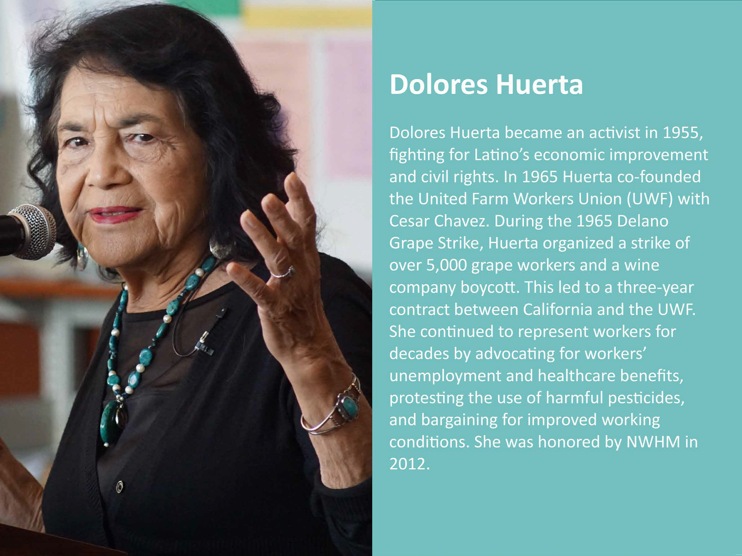 Dolores Huerta became an activist in 1955, fighting for Latino's economic improvement and civil rights. In 1965 Huerta co-founded the United Farm Workers Union (UWF) with Cesar Chavez. During the 1965 Delano Grape Strike, Huerta organized a strike of over 5,000 grade workers and a wine company boycott. This led to a three-year contract between California and the UWF. She continued to represent workers for decades by advocating for workers' unemployment and healthcare benefits, protesting the use of harmful pesticides, and bargaining for improved working conditions. She was honored by NWHM in 2021.
