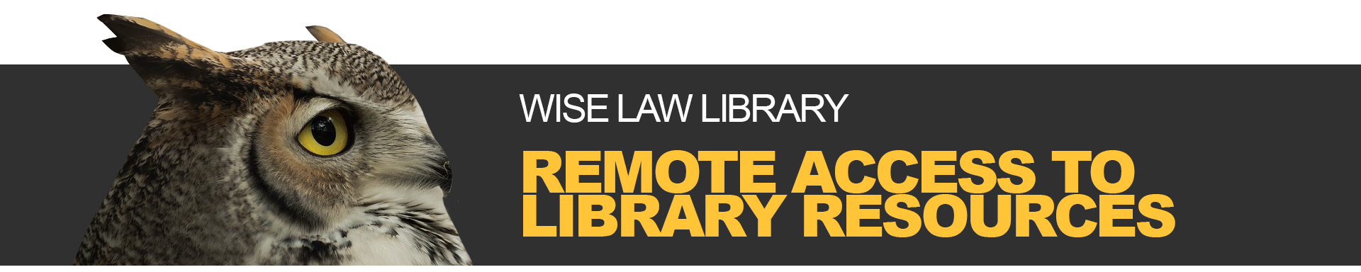 "A banner reading ""Remote Access to Library Resources"""