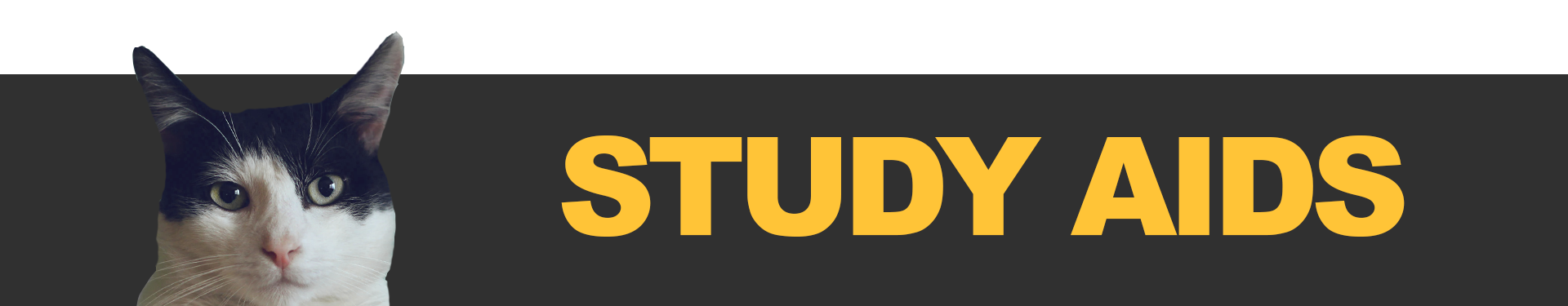"A banner image reading ""Study Aids"""