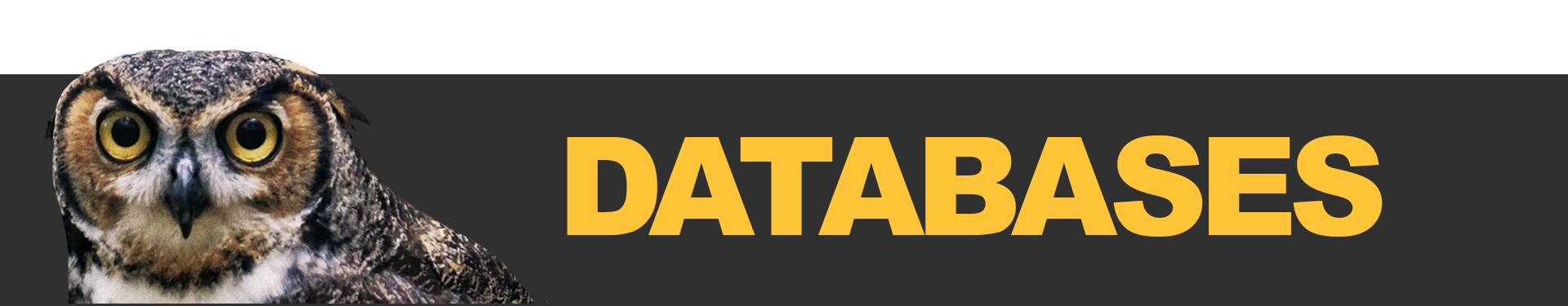 "A banner image reading ""Databases"""