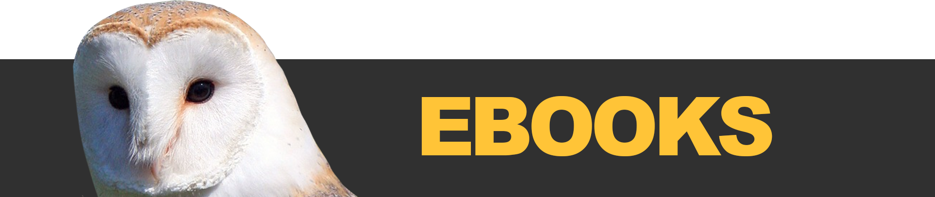 "A banner image reading ""eBooks"""