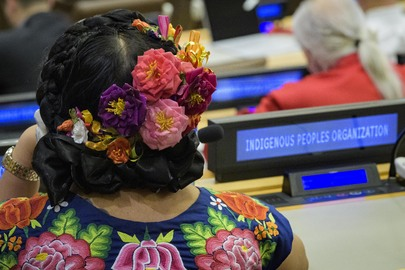 "Image shows the back of someone's head with flowers braided in their hair, and a sign to their right labeled ""indigenous peoples organization"""