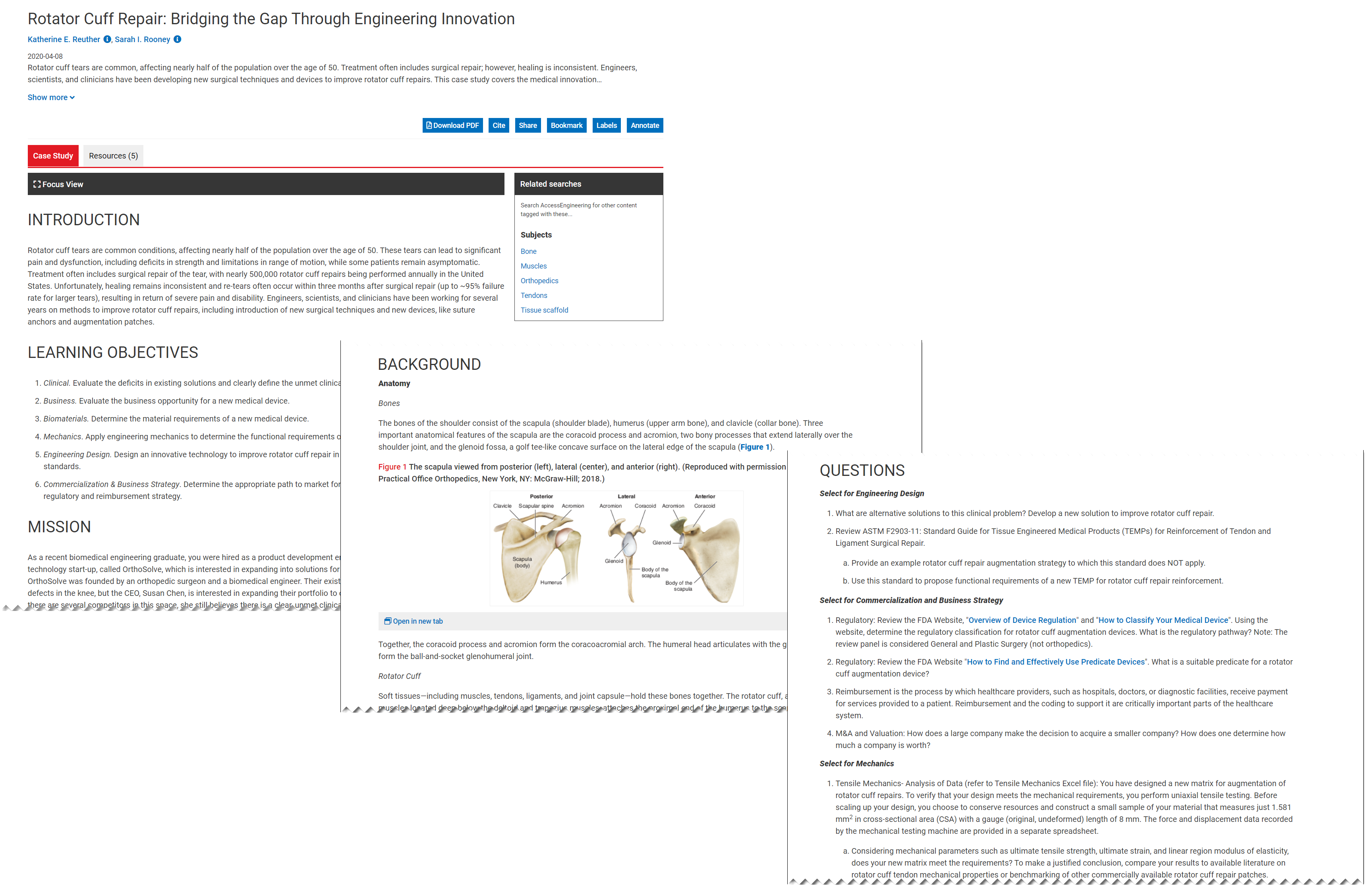 Image showing AccessEngineering case study layout