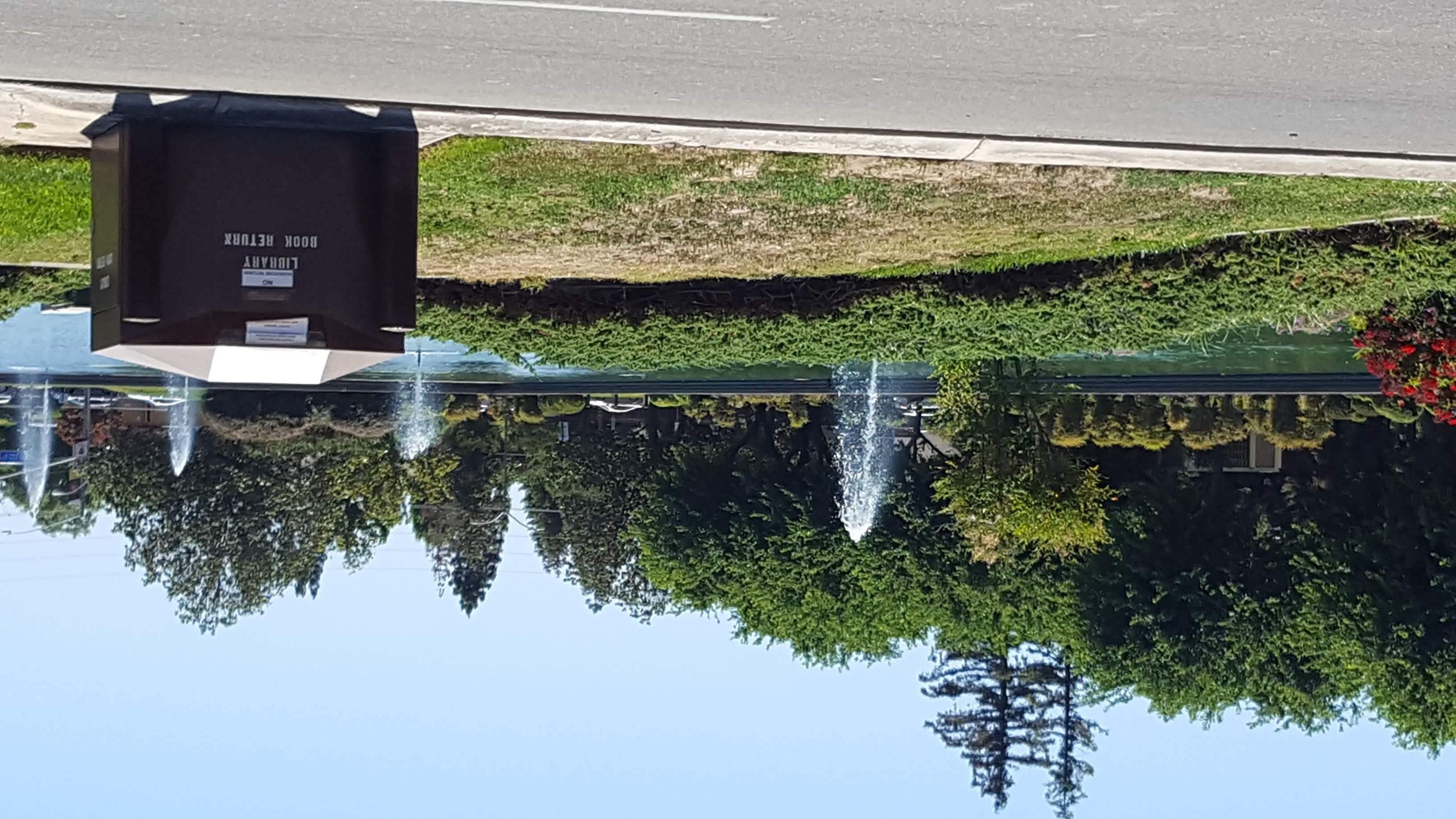 reflecting pond book drop