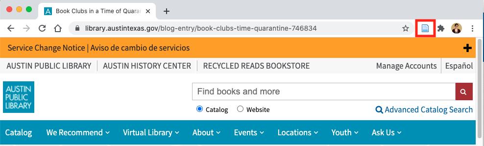 Austin Public Library Blog Visual Example