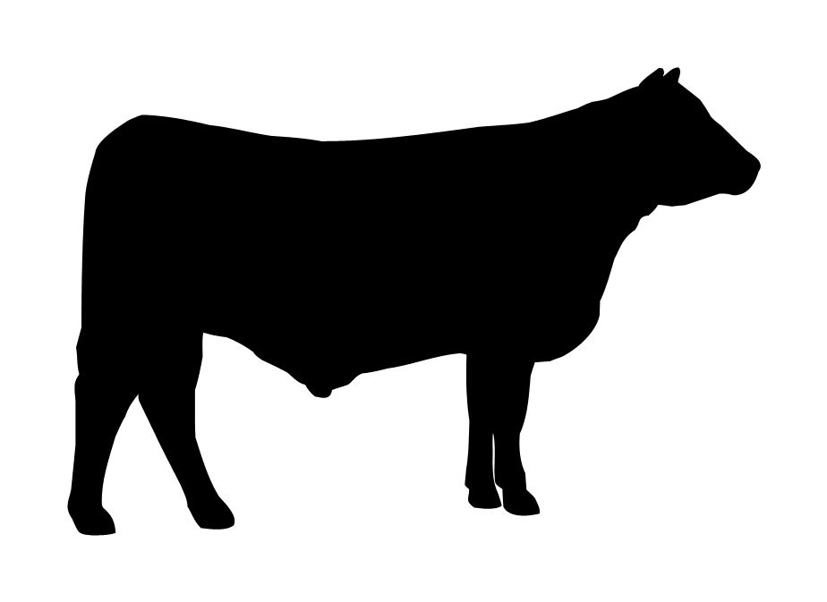 Genes associated with body weight gain and feed intake identified by meta-analysis of the mesenteric fat from crossbred beef steers