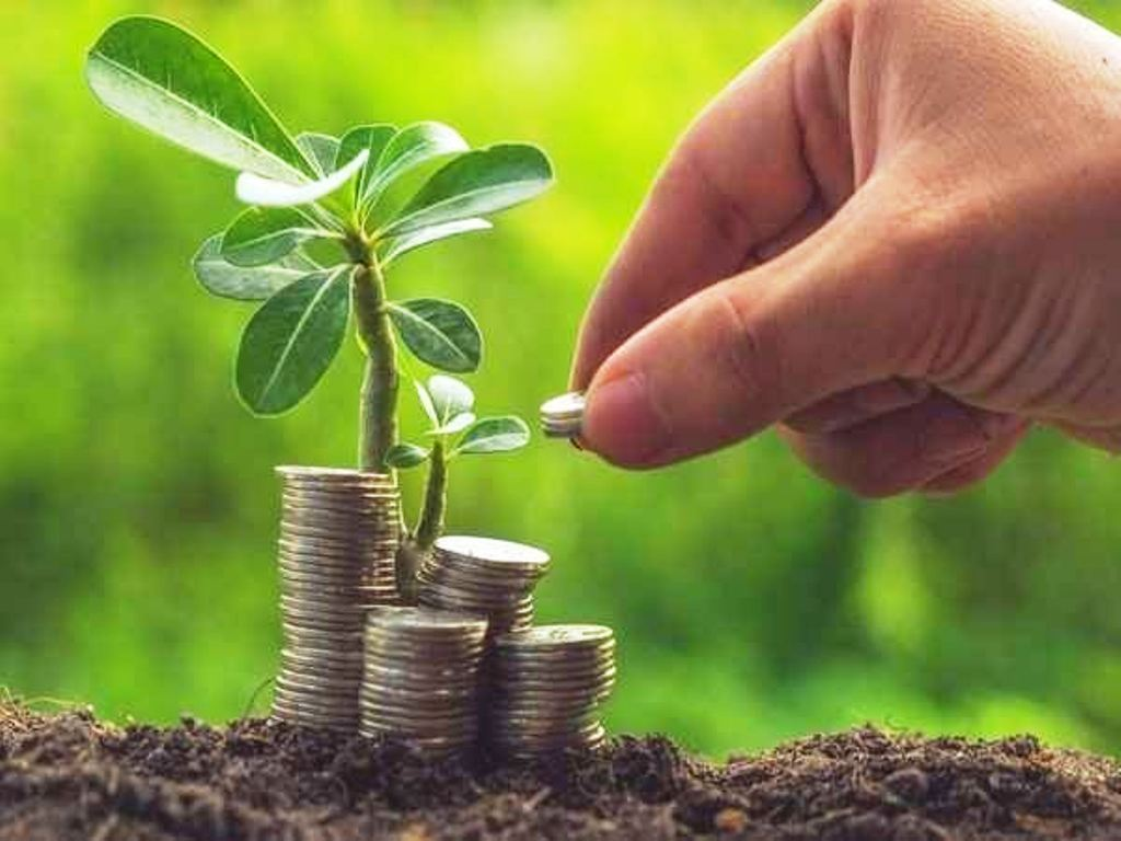 Agricultural business economics: the challenge of sustainability