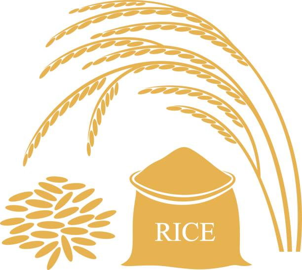 The Economics of On-Farm Rice Drying in Arkansas