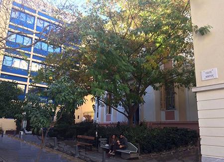 Webster University Athens campus