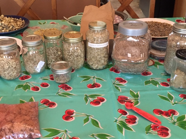 Picture of some of the seeds used in the seed balls