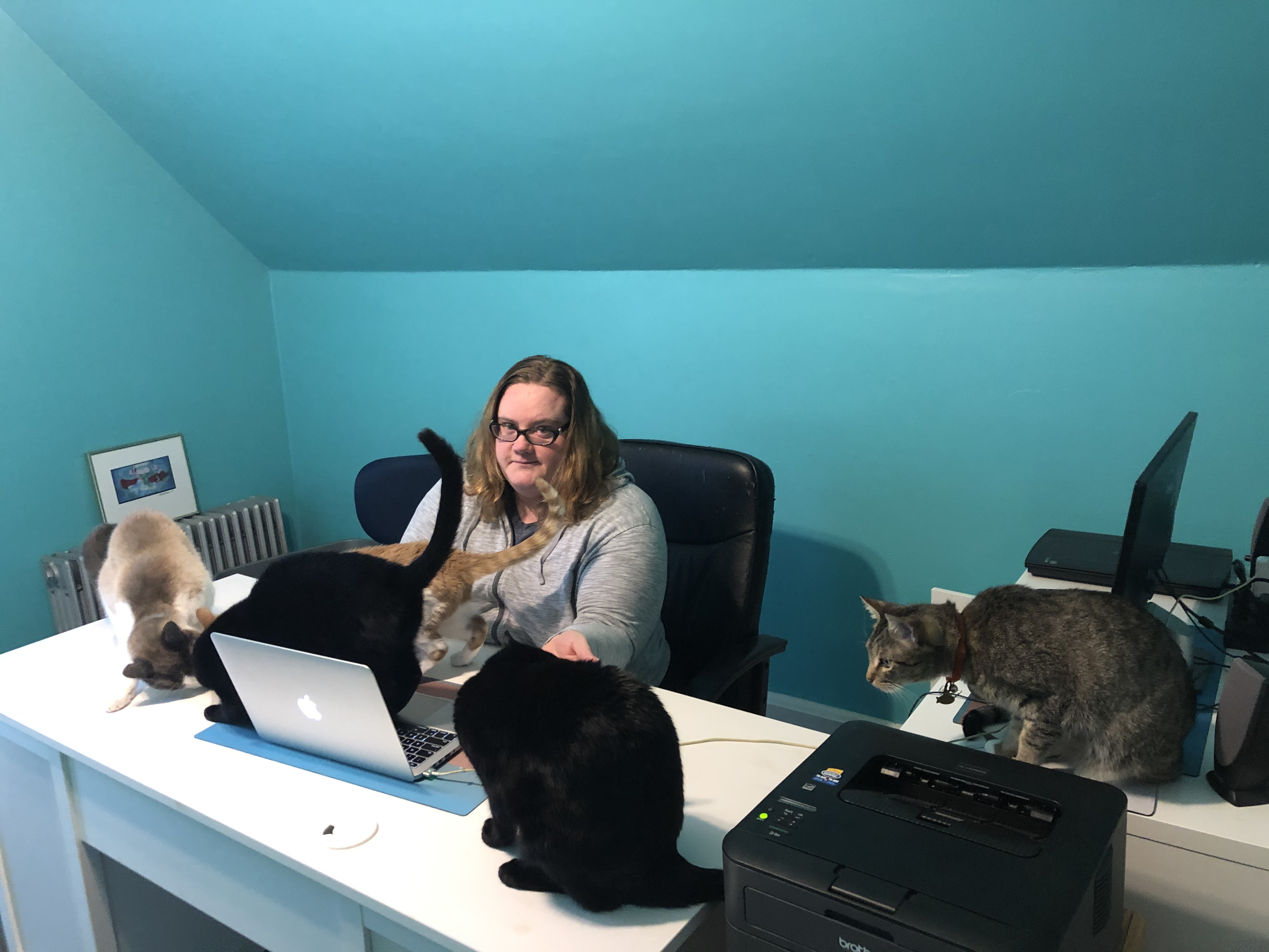 picture of Tina in her home office with five cats