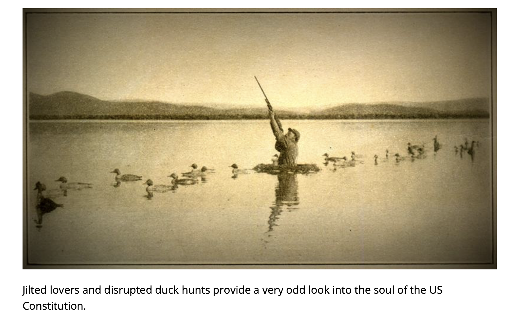 Screenshot from a page on WNYC of a solitary duck hunter, submersed in a lake and surrounded by ducks but shooting upward.