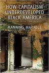 Cover for How Capitalism Underdeveloped Black America by Manning Marable